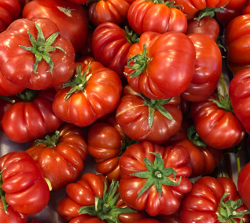 Italian Market tomatoes